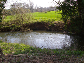 River Pant, Mill House to Copford Hall