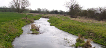 River Pant near Petches Bridge